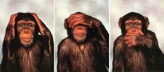 12ème chapitre les 3 singes